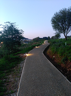 • Iluminación Bosque de Galicia. Monte Gaiás (Santiago de Compostela) SEAGA